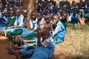 6. Primary School Students